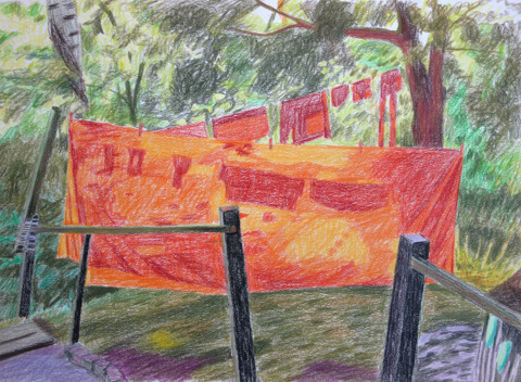 Orange, 2013, color pencil, 30x40 cm