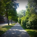 Cykelväg efter Gavleån.