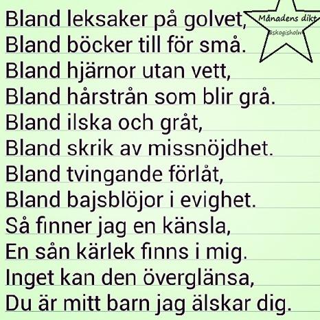 Månadens dikt är skriven av Andréas Skogholm från Jorråsatte. Grattis! :)