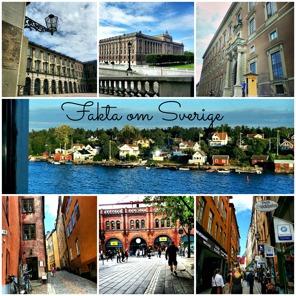 Här hittar du bland annat information om våra traditioner och högtider i Sverige. Klicka på bilden!