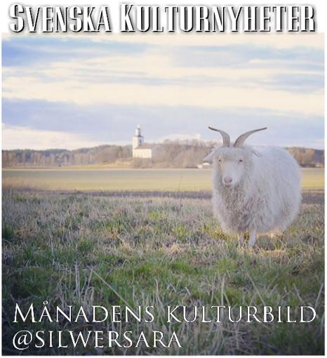Månadens kulturbild maj 2016 har Sara Strömberg Wisting @silwersara tagit. Grattis! :)