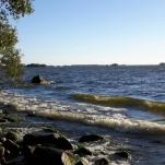 Den 7/ 9 var det en solig dag och ca. +20° Bilden är fotad vid Hjälmaren i Järnäs, Arboga.