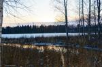 Söndag 20/11 Örnäsets kyrkogård, Vy över Hertsöfjärden, Luleå. Solen bryter sig fram i horisonten, efter en gråmulen vecka. 0 gradigt. Foto: Carina Marklund