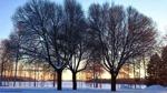 Lördag 10/12 Örnäsets kyrkogård. -9 grader, blåsigt, sol en kort stund det blir fort mörkt.. ;) Foto: Carina Marklund