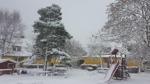 Österåker 27/11 Mulet väder med snöfall.