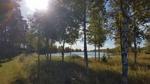 Måndag 12 September.Skarvsjöby, Västerbottens län, Södralappland. Strålande sol men lite blåsigt. ca. 12-15°. Fotograf: Marika Olofsson
