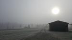 Torsdag 14/10. Skarvsjöby, Storuman Kommun, Västerbottenslän, Södralappland. Morgon dimma och frost, runt - 1 °. Fotograf: Marika Olofsson