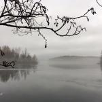 Söndag 11/12 Ösjön Småland. +4 grader mulet, dimma och regn. Foto: Marie Rosell.