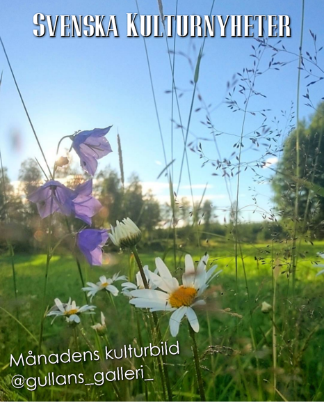 Grattis säger vi till Gull-marie @gullans_galleri_ som har tagit den här fina sommarbilden i Eskilstuna!