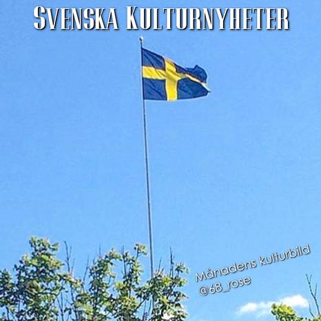 Månadens kulturbild har Rose-Marie Karning @68_rose tagit nu på Sveriges Nationaldag, den 6 juni 2017. Grattis! :)