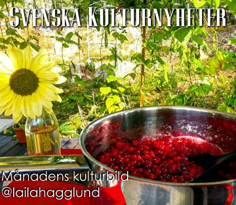 Månadens kulturbild har Laila Hägglund @lailahagglund tagit på Instagram. Grattis! :)
