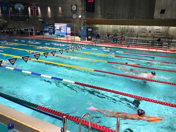 Bilder fra innsvømming onsdag kveld. FOTO: NM i svømming Stavanger 2016/Facebook
