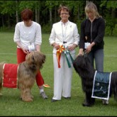 2007 - Domare: Jeannette Larive, Frankrike. BIR Cartier Monzerat Frisky Faust - BIM Cartier Monzerat Lin