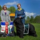 2010 - Domare: Karen Fletcher, England  BIM Cartier Monzerat Hoffa
