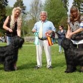 2012 - Domare: Alain Pecoult, Frankrike. BIR Cartier Monzerat Ming - BIM Goblinwalley Raw Power