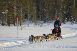 Hundspannstur Norråker