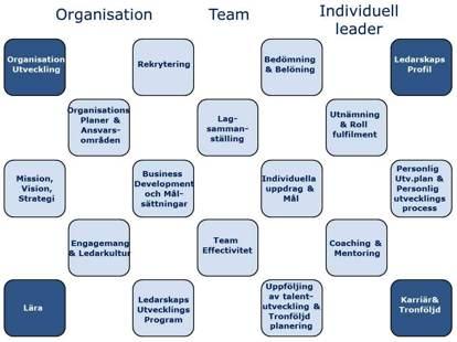 Ledarutveckling i en organisatorisk kontext