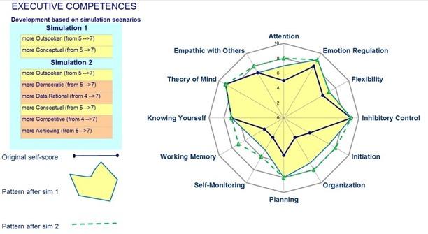 CEO brain competences report