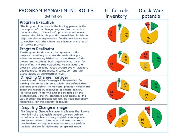Fit for Role analysis Program Management Roles