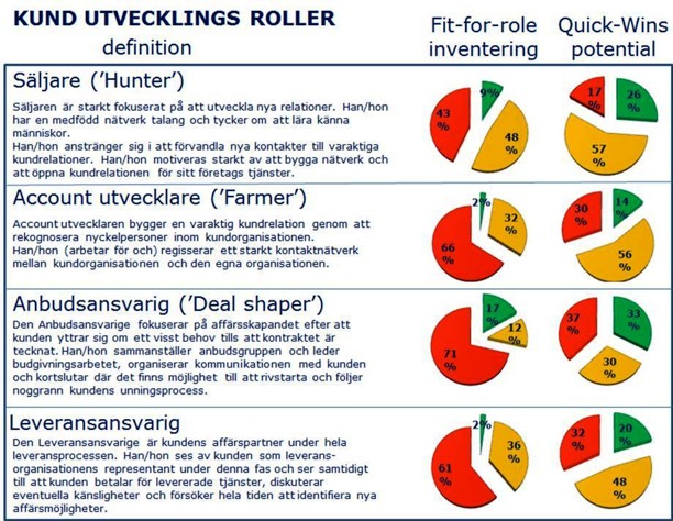 Kundutvecklingsroller: Fit-for-Roles inventering och Quick-Wins potential