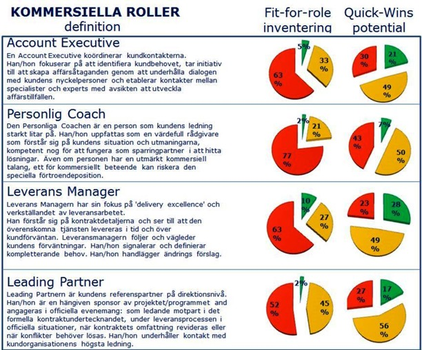 Kommersiella Roller: Fit-for-Roles inventering och Quick-Wins potential