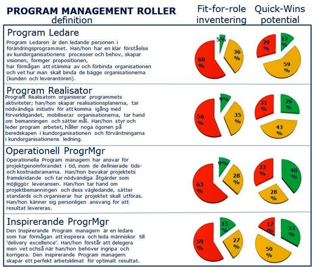 Program Management Roller: Fit-for-Roles inventering och Quick-Wins potential