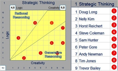 Example Strategic Behavioural Traits Analysis for a Management Team