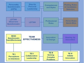 Team Effectiveness Program