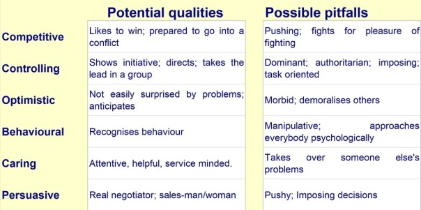 A candidate's Potential Qualities and Possiblew Pitfalls