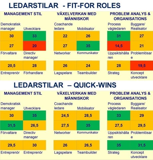 Ledarstil Portfölj: Fit-for-Roles och Quick-Wins