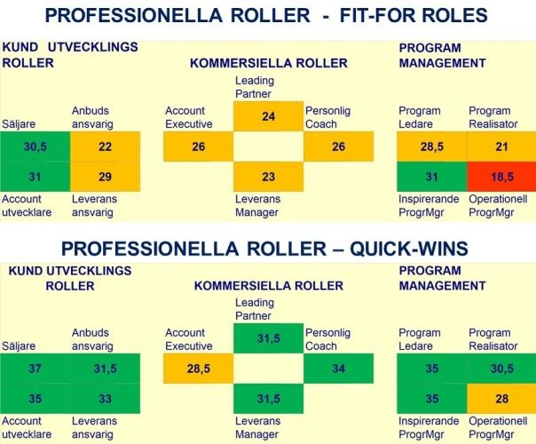Professionella Roller: Fit-for-Roles och Quick-Wins