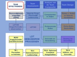 Het Team Effectivness Programma