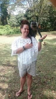 The Blue Monkey i kenya. Djur känner när vi vill dem väl.