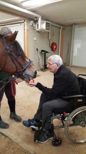 Sölve Danielsson med hästen Sune