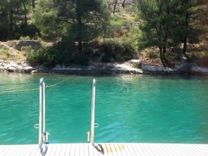 Grönt härligt vatten!