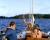 32. Tidig dagsseglingsmorgon. Sindra bogserar segelbåtarna som skall släppas i trakten av Askören. Bernhards holme i bakgrunden.