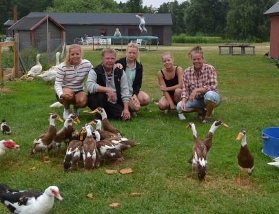 Foto från Gangvide Farms webbsida.