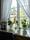 Ådalens fönster