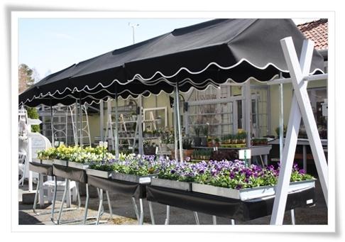 Säljtak Ljungs handelsträdgård