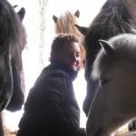 Emma & hästarna