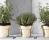 Herbs Pot 598 kr