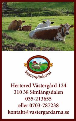 Beställ köttlåda nötkött Halmstad, Halland. Hos Västergårdarna utanför Halmstad kan du köpta & beställa köttlådor av nötkött fråm frigående fjällkor.