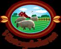 Våra får & lamm på Västergårdarna fårfarm utanför Halmstad mitt i Halland