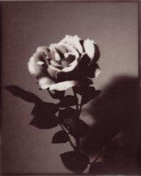 Ros, Pinhole camera
