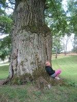 Vila vid träd