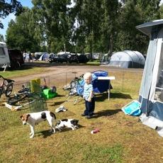 Böda Camping-2013