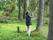 Det gäller att räkna steg och sätta snitslarna rätt! Tessan och Cax i spårskogen.