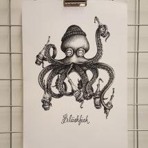 Print A3 - Bläskfisk