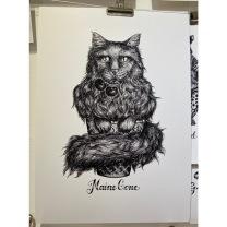 Print - Maine Cone