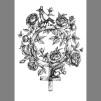 Print: Flowervenus - Kvinnosymbol A3 Svartvit